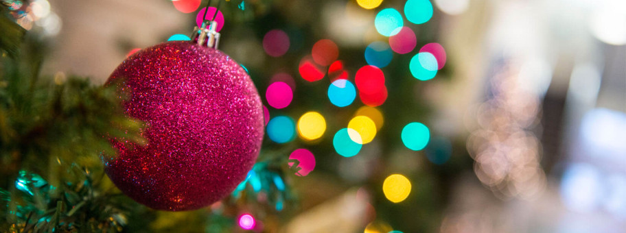 christmas-tree-news-feature